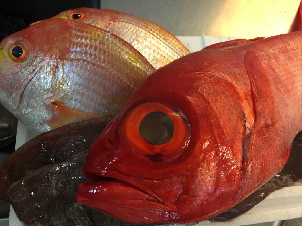 金目鯛、赤舌平目